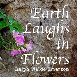 Earth laughs2